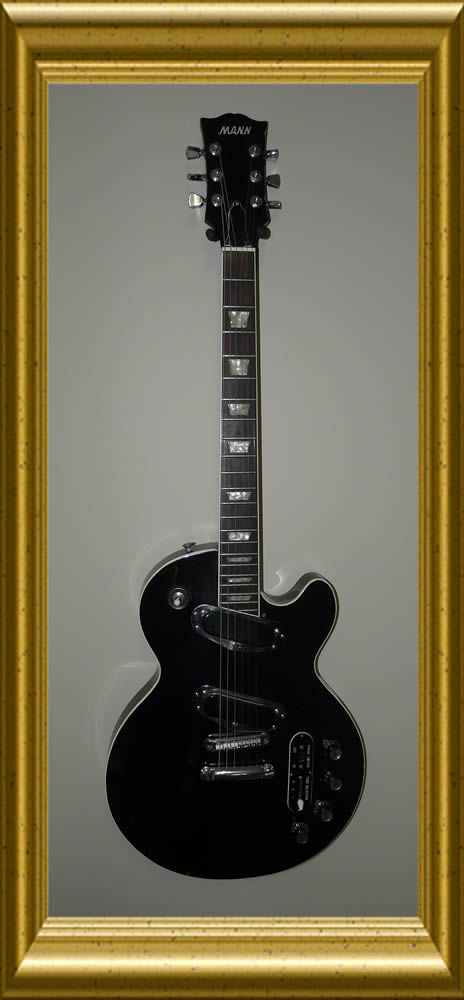 Mann Guitar LP Professional